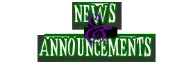 News banner1